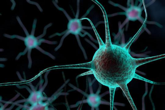 Våra hjärnceller bildar ett ännu oöverträffat nätverk. Centret har ambitionen att binda samman kunskaper på samma sätt som våra hjärnceller gör.Bild: © Zhu Difeng / Fotolia. Bilden är en visualisering av hjärnceller i ett forskningsprojekt om posttraumatisk stress.